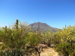 Vulkan auf der Baja California