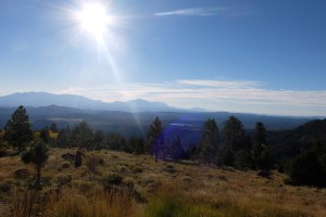 Impression im Dixie National Forest