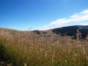 Bighorn Montains_1
