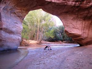 Coyote Natural Bridge und temporäre Brücke