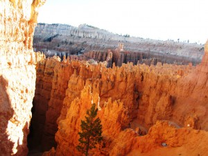 Bryce Canyon: Abschied