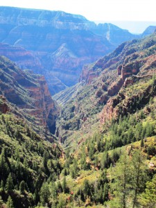 Blick in den Bright Angel Canyon