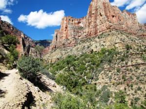 Im Bright Angel Canyon